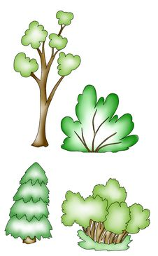 Free Trees And Shrubs. Stock Image - 19882261