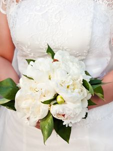 Free Bride Holding Bouquet Royalty Free Stock Image - 19882686