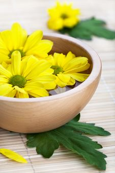 Free Yellow Flowers In Wooden Bowl Stock Image - 19885671
