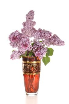 Free Lilac In A Vase Stock Photography - 19886482