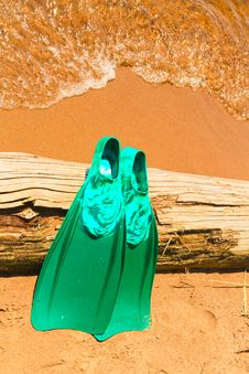 Free Beached Flippers Royalty Free Stock Image - 19887756