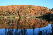 Fall Colors Reflected In Lake Royalty Free Stock Photography