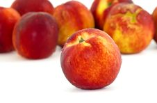 Free Nectarine In A White Background Royalty Free Stock Photography - 19889587