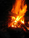 Free Camp Fire Royalty Free Stock Photography - 19892527