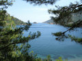 Free Beach Landscape View Of Island Among Fir Branches Royalty Free Stock Photography - 19892567
