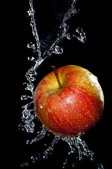 Free Fresh Red Apple Royalty Free Stock Photo - 19892175
