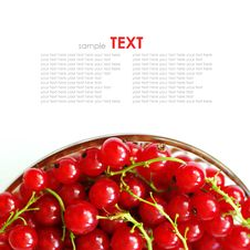 Free Fresh Currants Stock Images - 19894574