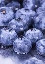 Free Fresh Blueberries Royalty Free Stock Photos - 1990838