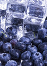 Free Cold Blueberries Royalty Free Stock Image - 1990946