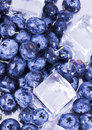 Free Cold Blueberries Stock Photos - 1990993