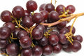 Free Bunch Of Grapes Royalty Free Stock Photography - 1994077