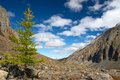 Free Larch, Mountains And Clouds. Stock Photo - 1995470