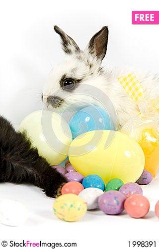 Free Easter Scene Stock Image - 1998391