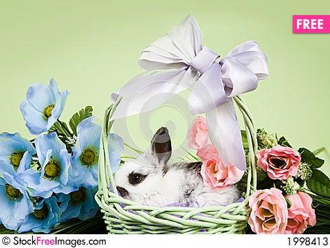 Free Easter Scene Stock Photos - 1998413