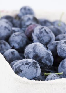 Free Blueberries Stock Images - 1990824