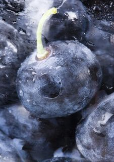 Free Fresh Blueberries Stock Images - 1990834