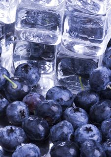 Cold Blueberries Royalty Free Stock Image