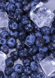 Free Cold Blueberries Stock Images - 1990974