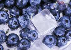 Cold Blueberries Royalty Free Stock Photos