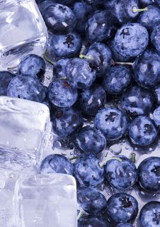 Cold Blueberries Stock Image