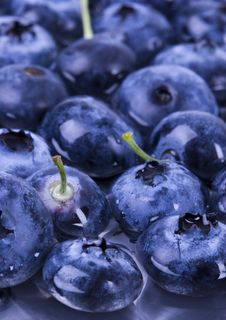Free Fresh Blueberries Stock Photo - 1991080