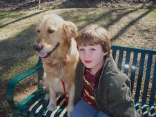 Free Boy And Golden Retriever On Bench Royalty Free Stock Images - 1992259