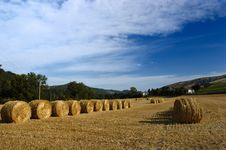 Free Wheat Sheaves Stock Photo - 1992260