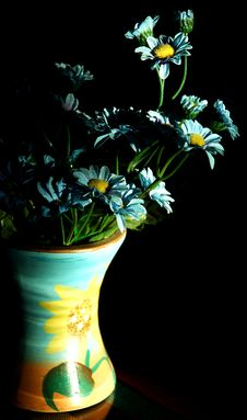 Free Abloom Quietly Royalty Free Stock Photos - 1997988