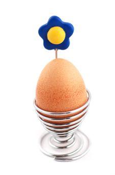 Free Egg Stock Photo - 1998970