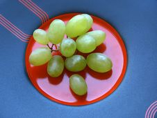 The Cluster Of Grapes. Royalty Free Stock Photos