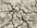 Free Cracked Ground Stock Image - 19901861