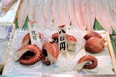 Free Octopus On Ice Royalty Free Stock Photos - 19901238