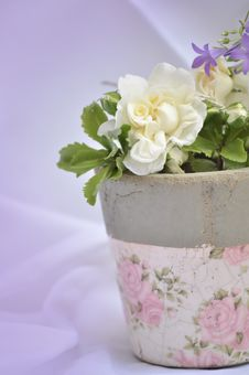 Free Retro Flower Pot Royalty Free Stock Images - 19901919