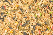 Free Texture From Cereals Royalty Free Stock Image - 19903396