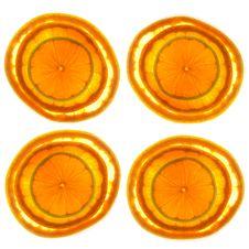 Free Sliced Grapefruit, Orange & Lime Royalty Free Stock Image - 19906286