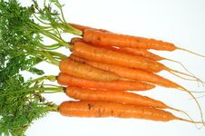 Free Baby Carrots Royalty Free Stock Image - 19906546