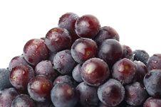 Free Grape Stock Photos - 19906773