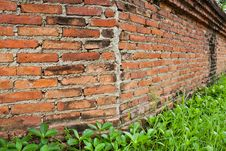 Free Old Bricks Wall Background Royalty Free Stock Photography - 19907317