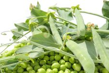 Free Peas Royalty Free Stock Photography - 19908737