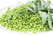 Free Green Peas Stock Photos - 19908743