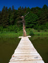 Free Footbridge Royalty Free Stock Image - 19912526