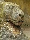 Free Stone Lion Stock Photo - 19919320
