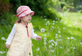 Free Toddler With Blowball Royalty Free Stock Photo - 19919745