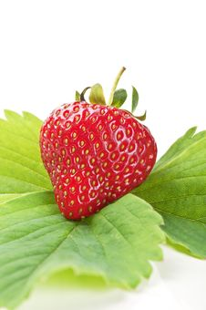 Free Fresh Strawberry On A Green Leaf Stock Photos - 19916203