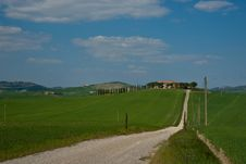 Free Driveway Through Tuscan Fields. Stock Images - 19918224