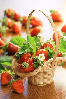 Free Strawberry Stock Photos - 19918513