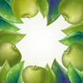 Free Leaves And Green Apple Frame Stock Photography - 19928402