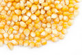Free Pile Of  Uncooked Popcorns Stock Photos - 19929273