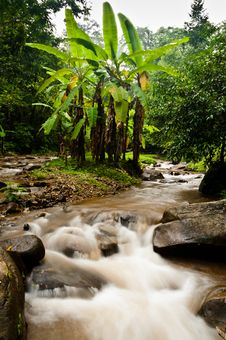 Free Waterfalls In Thailand Royalty Free Stock Images - 19921189