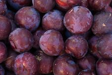 Free Organic Plums Royalty Free Stock Photos - 19921198